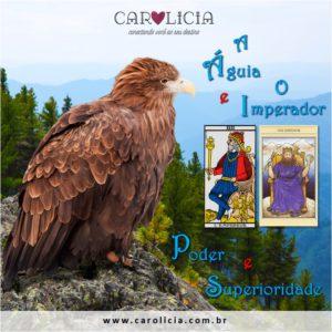 A Águia e o Imperador - Poder e Superioridade Carolicia